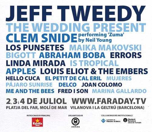cartel faraday 2010